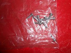 Eureka Screw 53215-5 NLA