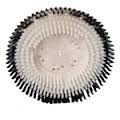 Nylon Carpet Scrub Brush 812917