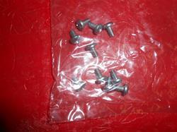 Sanitaire Screw 53228-2