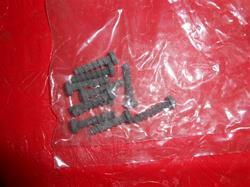 Sanitaire Screw Package 53197-1
